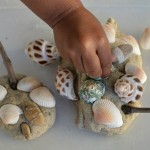 playing-with-shells